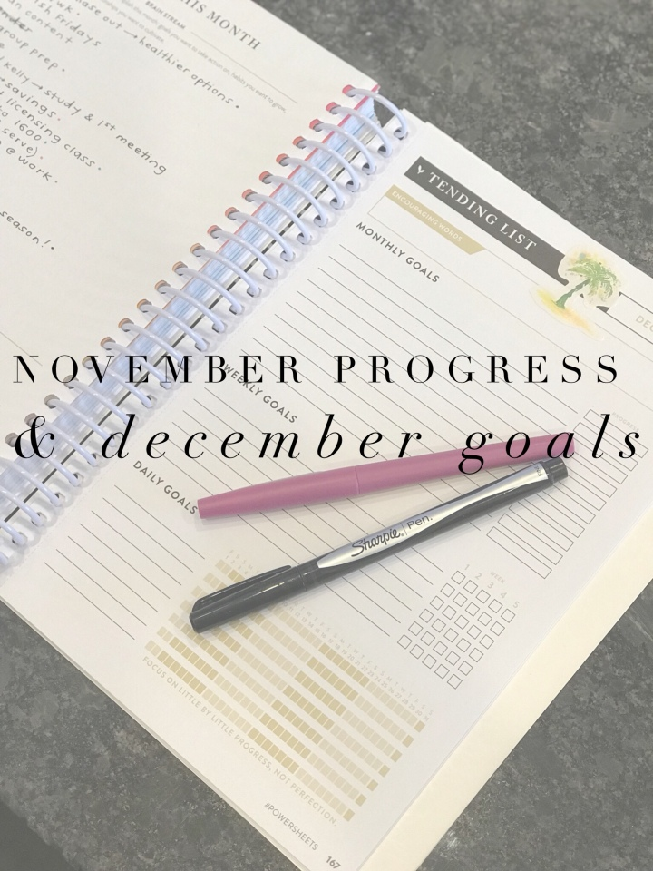 November Progress & December Goals