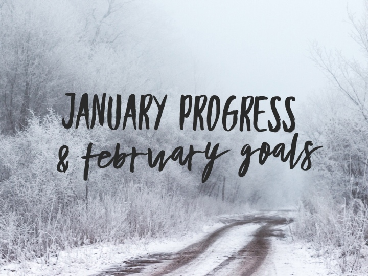 January Progress & February Goals 2018