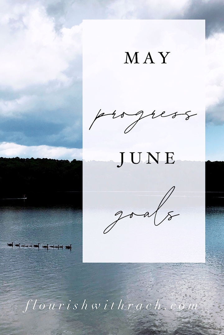May Progress | June Goals 2019
