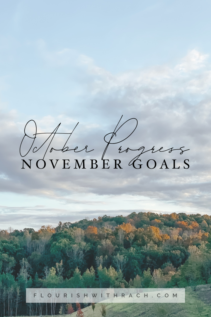 October Progress | November Goals 2019